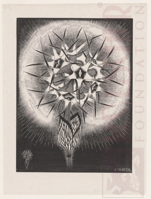 Prickly FLower. March 1936, Wood engraving.