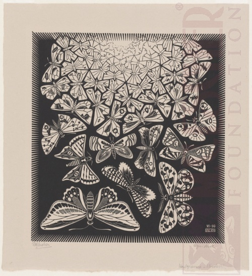 Butterflies. June 1950, Wood Engraving.