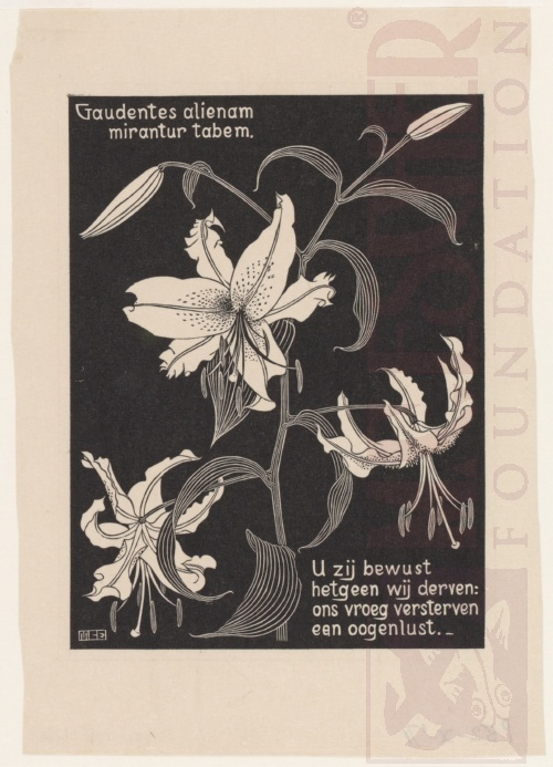 Flowers (See no162). March - June 1931, Woodcut.