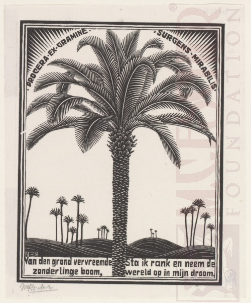 Emblemata, Palm Tree. March - June 1931, Woodcut.