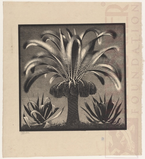 Palm. February 1933, Wood Engraving, printed from two blocks.