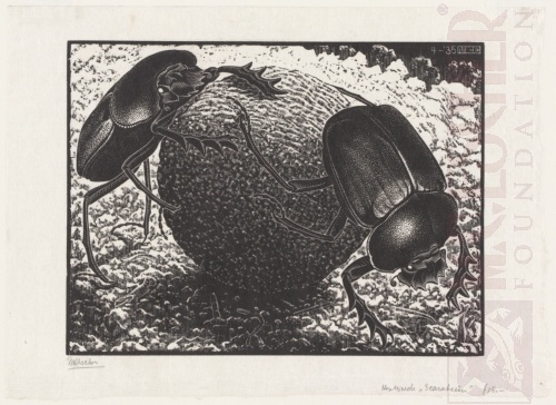 Scarabs. April 1935, Wood Engraving.