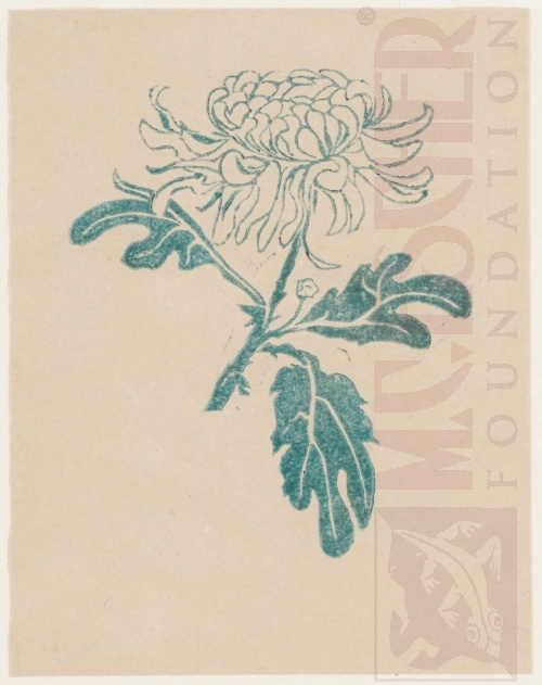 Chrysanthemum. 1916, Linoleum cut.