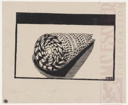 Sea-shell. 1919 or 1920, Woodcut.