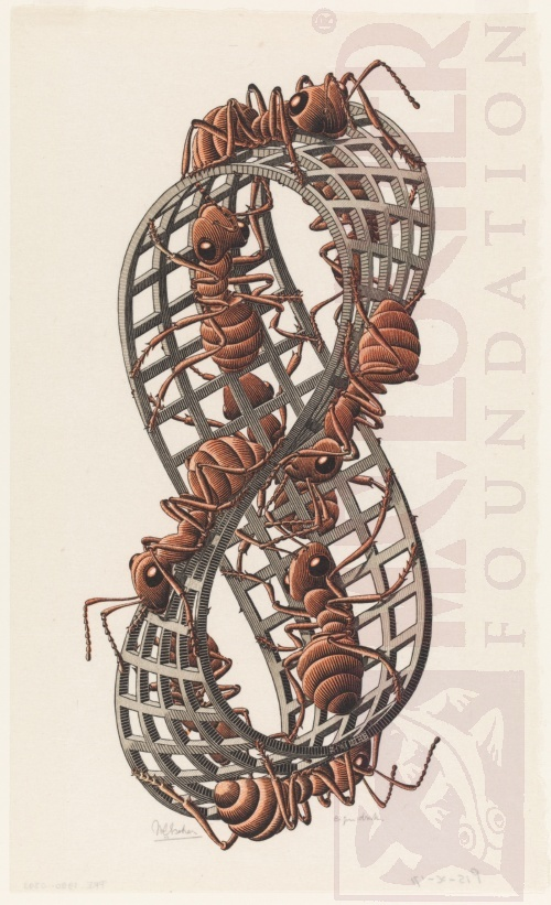 Möbius Strip II (Red Ants). February 1963, Woodcut, printed from three blocks.