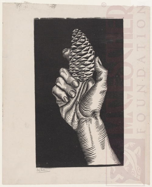Hand with Fir Cone. 1921, Woodcut.