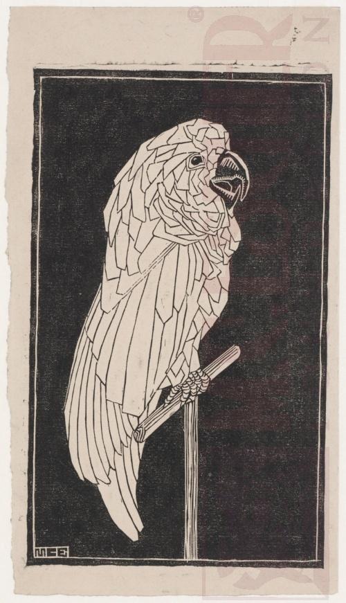 Papegaai - 1919. Linoleumsnede. 166mm x 275mm.