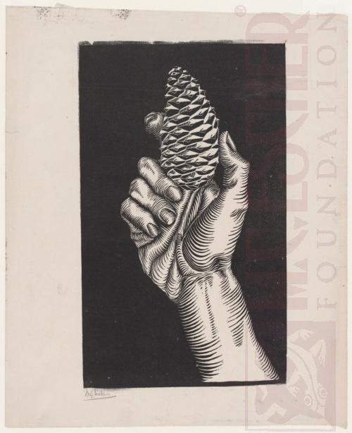 Hand met Dennenappel. 1921, Houtsnede