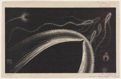 Dolfijnen. Februari 1923, Houtsnede